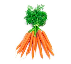 Carrot Netherland 500g