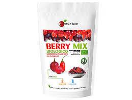 Organic Berries Mix 150g