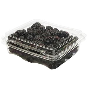 Black Berry 1pkt