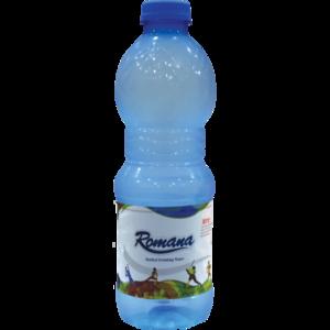 Pasta Romana Bottled Drinking Water 500ml