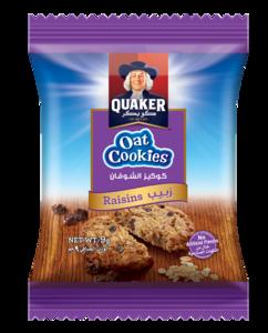 Oats Cookies Raisin 9g 9g