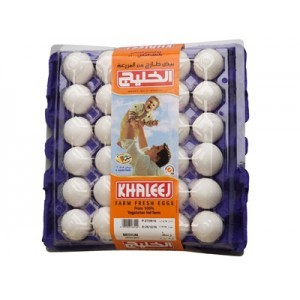 Al Khaleej Large Eggs White 30pc