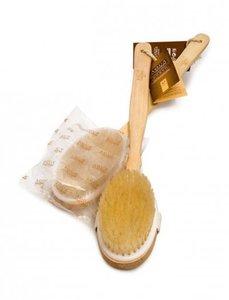Aqua Beech Wood Massage Brush 12pc