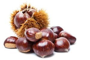 Chestnut China 1kg