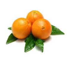Orange Navel Egypt 1kg