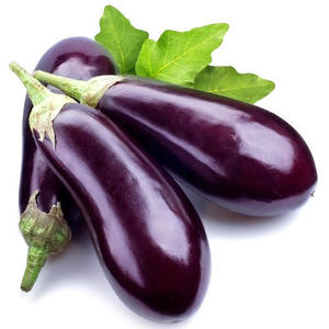 Eggplant Big Organic UAE 1kg
