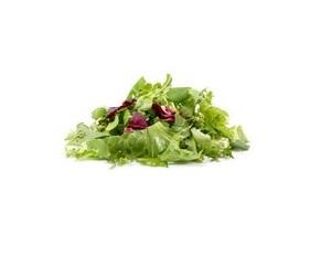 Organic Lettuce Mix Italy 100g