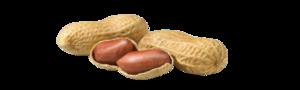 Organic Peanuts India 1kg