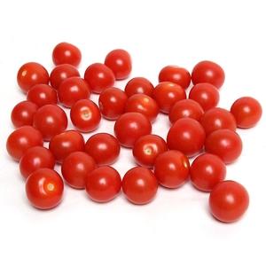 Organic Tomato Cherry Holland 250g