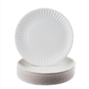 Fun Stander Paper Plate White 100s