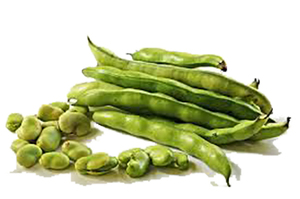 Broad Beans 100gm