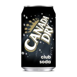 Canada Dry Club Soda Can 300ml