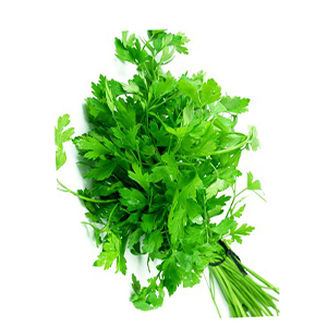 Parsley Premium UAE 1bunch