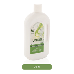 Union Anti Bacterial Disinfectant 2L