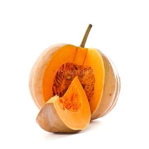 Pumpkin Red Morocco 500g