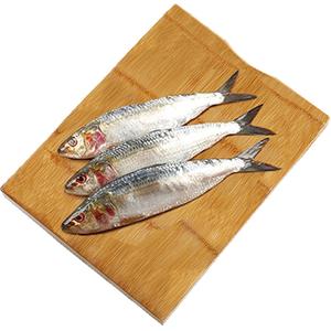 Fresh Sardines Big UAE 500g