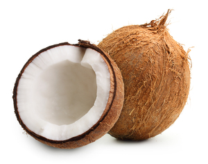 Coconut India 1s