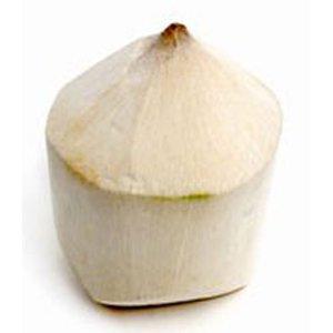 Tinder Coconut Thailand 1s