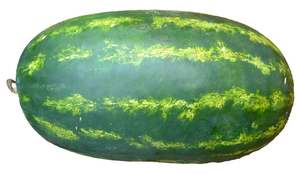 Watermelon Long Iran 1kg