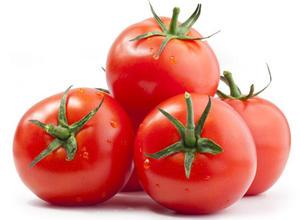Tomato Turkey 500g