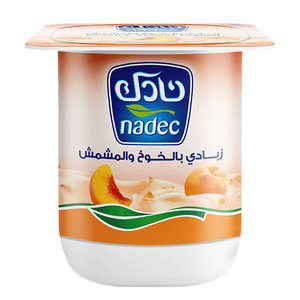 Nadec Fruit Yoghurt Apricot 120mg