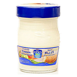 Nadec Cream Cheese Spread 140g