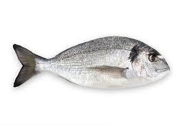 Sea Bream UAE 1kg