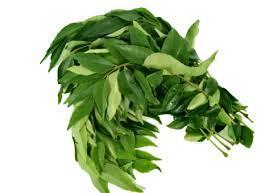 Curry Leaves Sri Lanka 500g