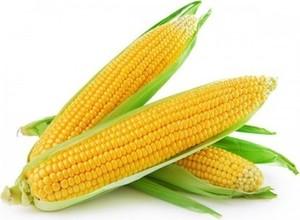 Sweet Corn UAE 500g