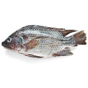 Grilled Fresh Tilapia Egypt 500g