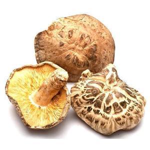 Dried Shitake Mushroom China 100g