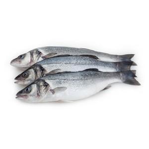 Fresh Seabass 500g