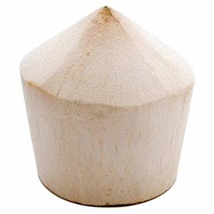 Coconut Young Thailand 1pc