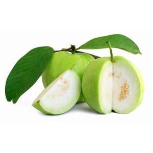 Guava Thailand 1pkt