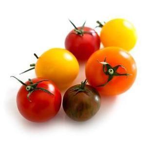 Tomato Cherry Mix Holland 1pkt