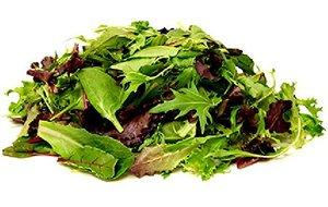 Lettuce Mix UAE 100g pkt