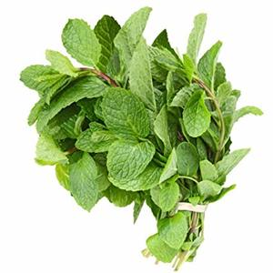 Mint Leaves 1bunch