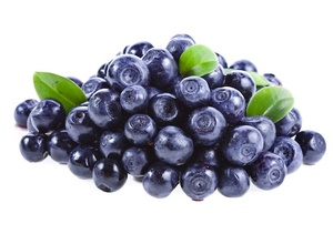 Blueberry Argentina 1pkt