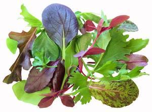 Green Leaves UAE 1bundle