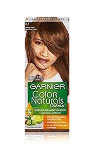 Garnier Hair Color Naturals No. 6.1 1pack