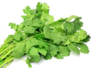 Coriander Leaves Local 1bunch