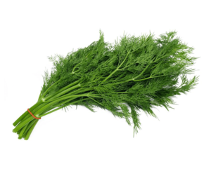 Dill Leaves Local 1bunch