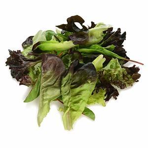 Continental Leaf Salad 100g pkt
