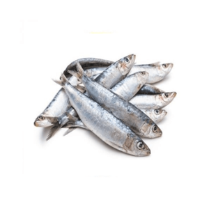 Sardines 1kg