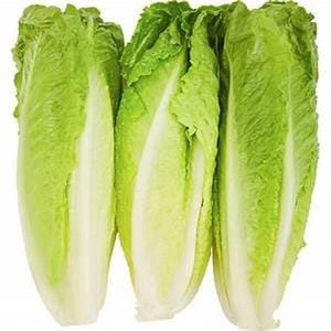 Lettuce Romaine Local 500g