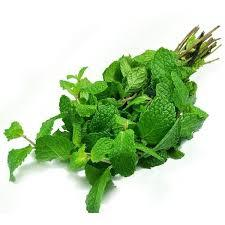 Mint Leaves UAE 1 Bunch