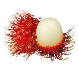 Rambutan Vietnam 500g