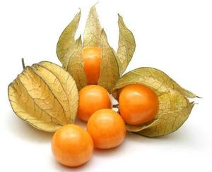 Physalis Colombia 100g pkt