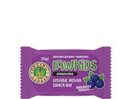 Organic Larder Rawkids Snack Bar Blueberry Quinoa 25g