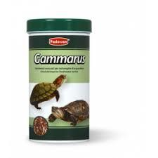Padovan Gammarus Freshwater Turtle Food With Dried Shrimps 1pkt